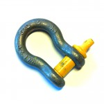 2t Bow-Shackle (Screw-Pin)